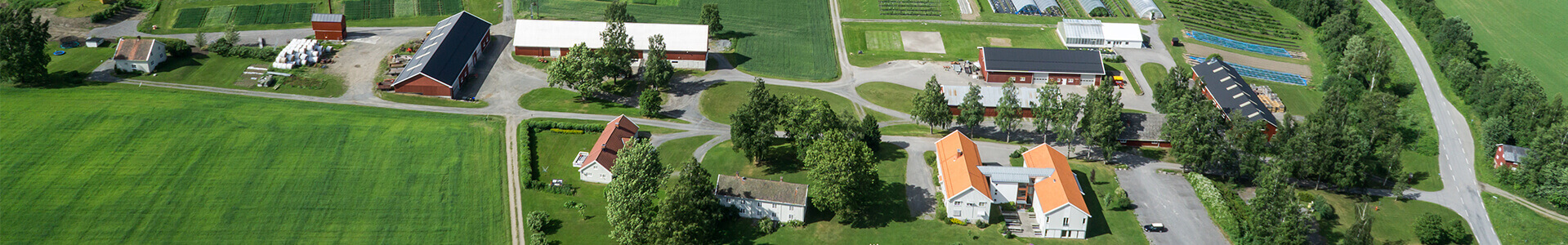 The picture of facilities shows the farm from above